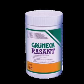 KLUTHE Grüneck® Rasant Abbeizer